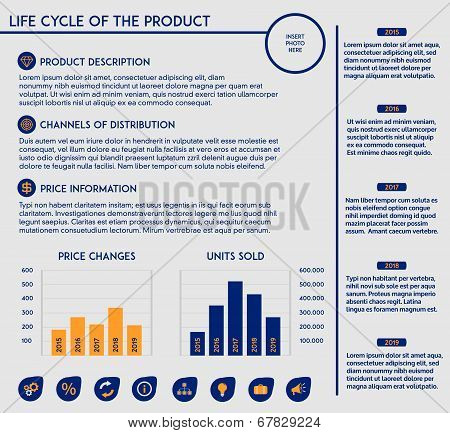 Editable template - life cycle of a product in marketing with charts, diagrams and icons
