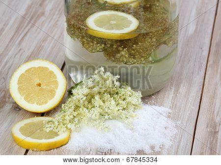 Elderflower Lemonade, Sambucus Nigra