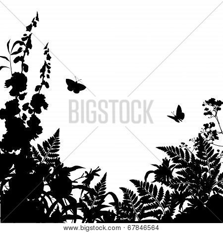 Herbs Flowers Silhouette Background