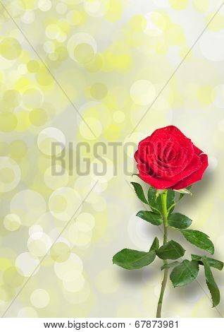 Bouquet Of Red Roses With Green Leaves On The Abstract Background With Bokeh Effect