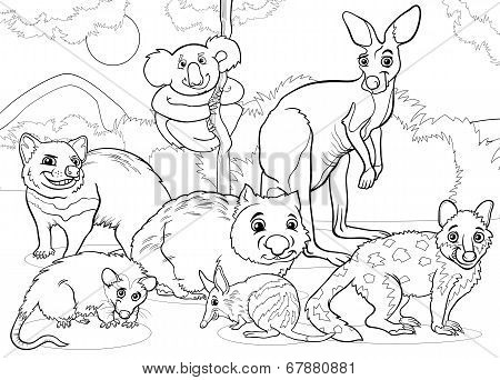Marsupials Animals Cartoon Coloring Page