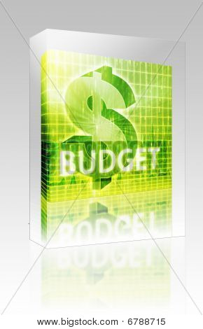 Budget Finance Illustration Box Package Box Package