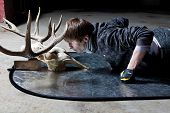 image of black tail deer  - Young man lying down looking at the deer skull in a dark basement - JPG
