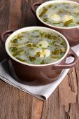 pic of sorrel  - Delicious green soup with sorrel on table close - JPG