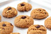 pic of baked raisin cookies  - Freshly delicious baked oatmeal raisin cookies - JPG