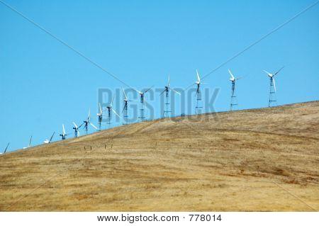 Lots of windmills