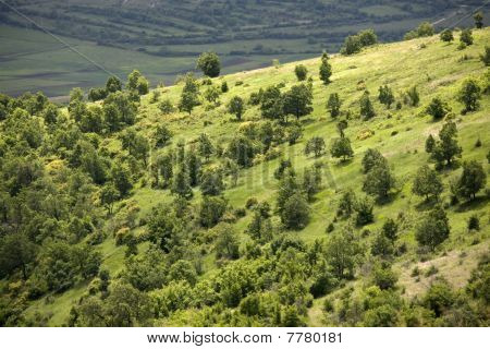 Mountain Landscape With Green Hills