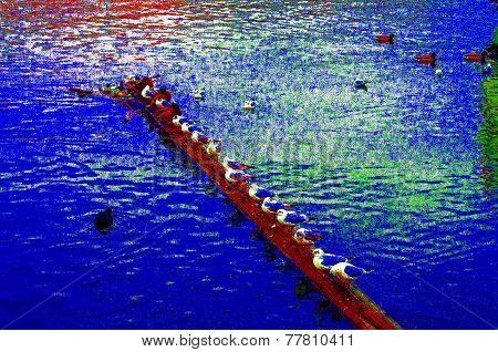 Abstract Group Of Gulls On The River