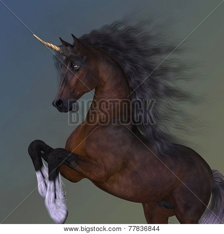 Bay Unicorn Levade