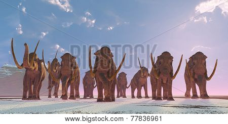 Columbian Mammoth Herd