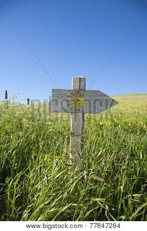 Camino Santiago Wood Signpost