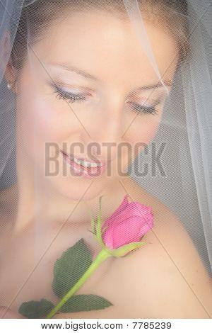 Bride posing in veil and rose