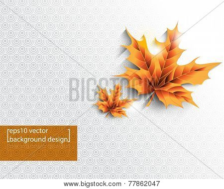 eps10 vector isolated Autumn leaves with round patterns Christmas background