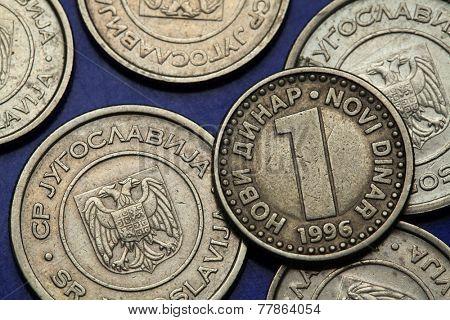 Coins of Yugoslavia. Yugoslav one novi dinar coin (1996).