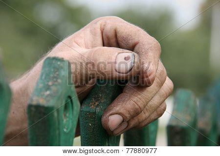 Hand Of Senior