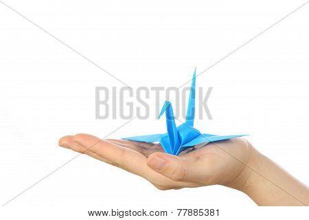 blue bird of luck