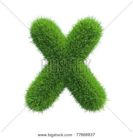 Letter x of green grass