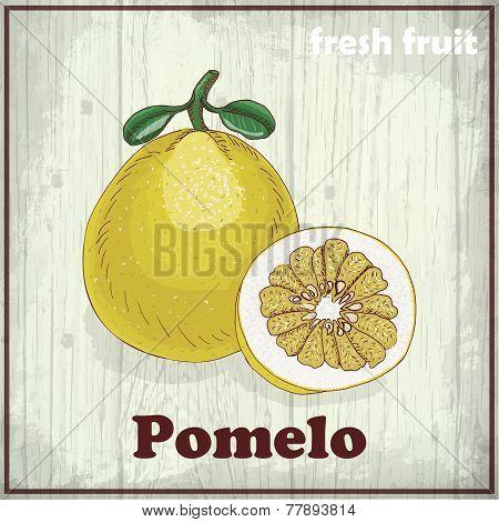 Fresh Fruit Sketch Background. Hand Drawing Illustration Of Pomelo