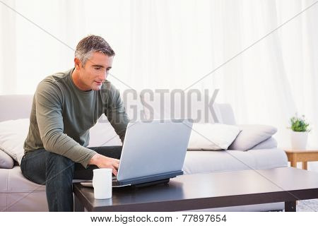 Cheerful man sitting on couch using laptop at home in the living room