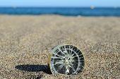 foto of orientation  - Orientation Concept One Compass on the Beach near the Atlantic Ocean - JPG