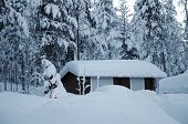 pic of laplander  - Christmas tree with small cottage at beautiful Lapland winter forest - JPG