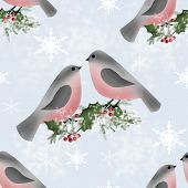 picture of holly  - Bullfinches and holly branch seamless pattern texture background - JPG