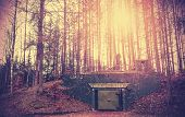 picture of surreal  - Scary bunker hidden in a forest with surreal colors - JPG
