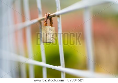 Closed Padlock Locked Onto Square Fence With Exteme Shallow Focus