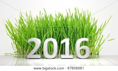 2016 in front of green grass