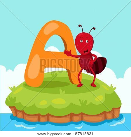 Illustrator of Letter 'A is for ant'