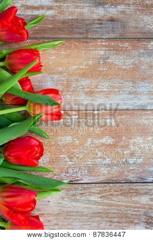 gardening , flowers, advertisement and holidays concept - close up of red tulips on wooden background