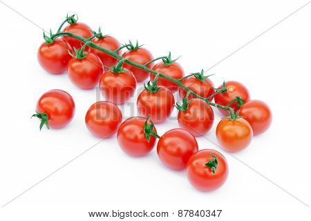 Bell Tomatoes On The Vine