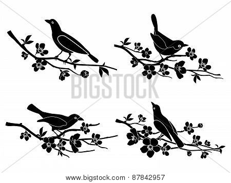 Birds on branches. Vector silhouettes