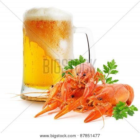Mug With Beer And Red Lobsters Isolated On A White Background