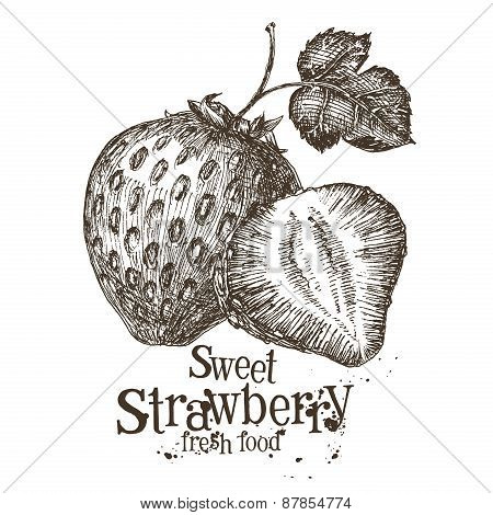 strawberry vector logo design template. fresh berry, food or harvest icon.