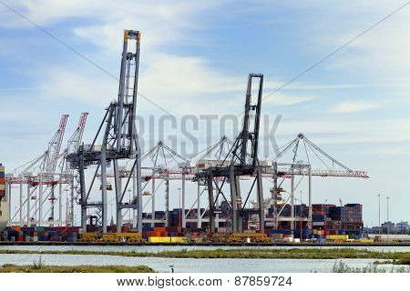 Harbor cranes uploading containers for shipping