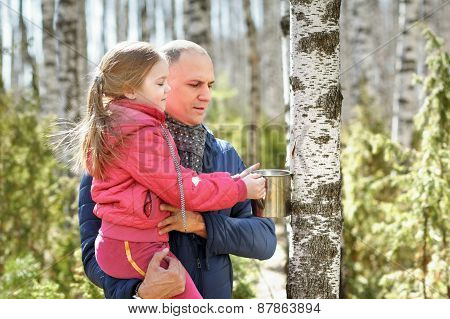 family in wood collecting birch sap to steel mug