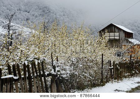 Abandoned Wooden House With Old Broken Fence In Winter, Armenia, Caucasus Mountains,asia