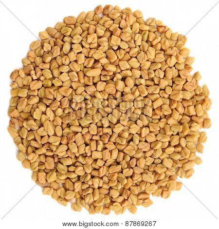 Fenugreek Seeds In Round Shape Isolated