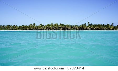 View From Sea On Beach Of Isla Saona