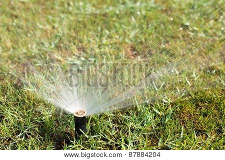 Outdoor Sprinkler