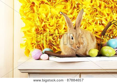Cute red rabbit with Easter eggs on shelf on yellow fabric background