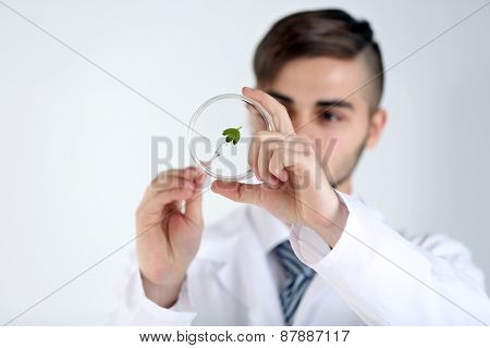 Man holding Petri dish with green leaf, close up