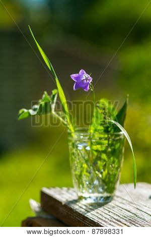 Small Summer Bouquet With A Bluebell