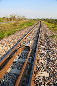 image of tree lined street  - Railway line passing through the green plants - JPG