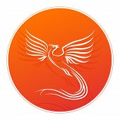 foto of risen  - Badge with Phoenix bird silhouette and place for your text - JPG