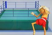 image of boxing ring  - Thai style boxing figure poised to box with boxing ring in background - JPG