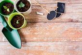 stock photo of nameplates  - gardening and planting concept  - JPG