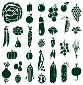 picture of turnip greens  - green icons on white background with vegetables fruits and berries - JPG