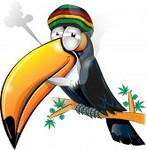 foto of toucan  - jamaican toucan cartoon isolated on white background - JPG